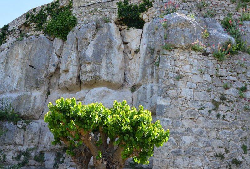 "Herb Garden – Garden classified ""Remarkable"" à La Garde-Adhémar - 0"